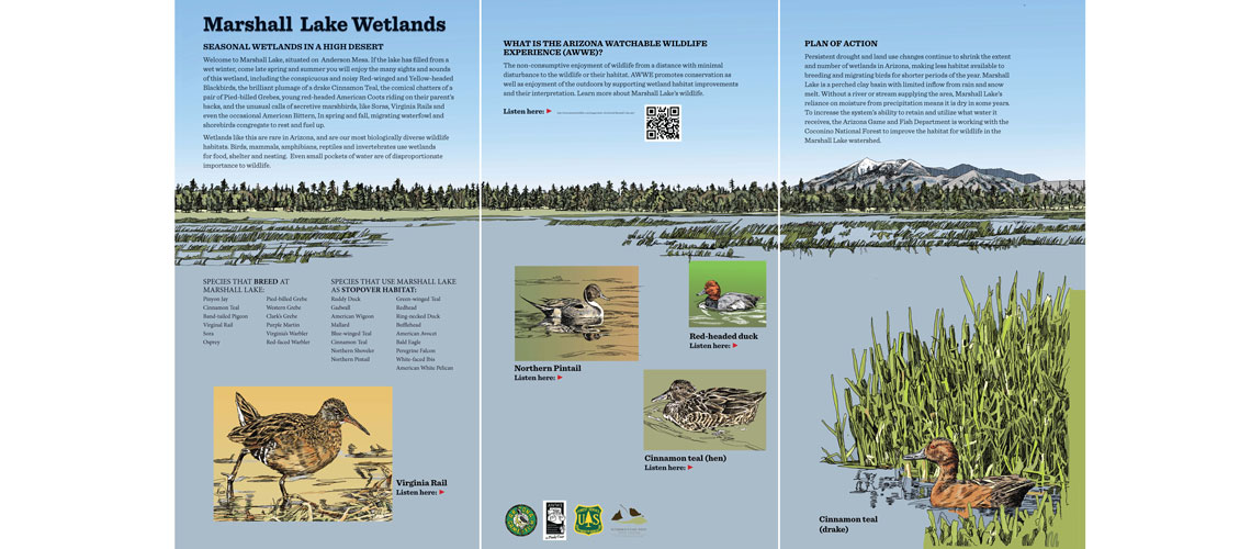 Interpretive signs for Marshall Lake